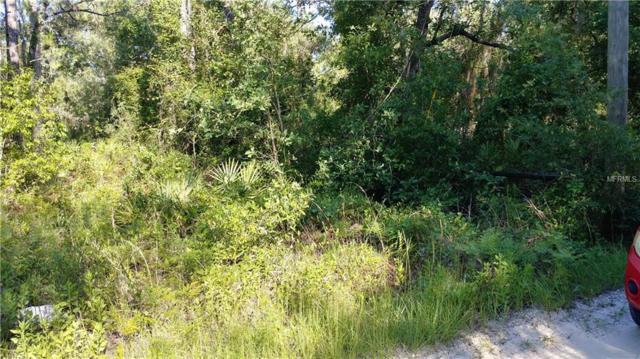 4829 N Mattox Pt, Crystal River, FL 34428 (MLS #W7801739) :: Griffin Group