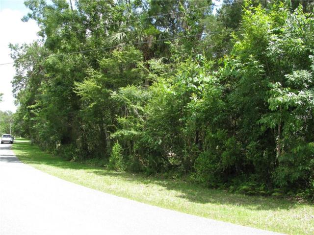 11123 W Grybek Drive, Homosassa, FL 34448 (MLS #W7802201) :: Mark and Joni Coulter | Better Homes and Gardens