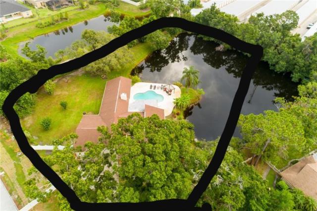 2364 Pine Tree Terrace, Palm Harbor, FL 34683 (MLS #W7802225) :: Dalton Wade Real Estate Group