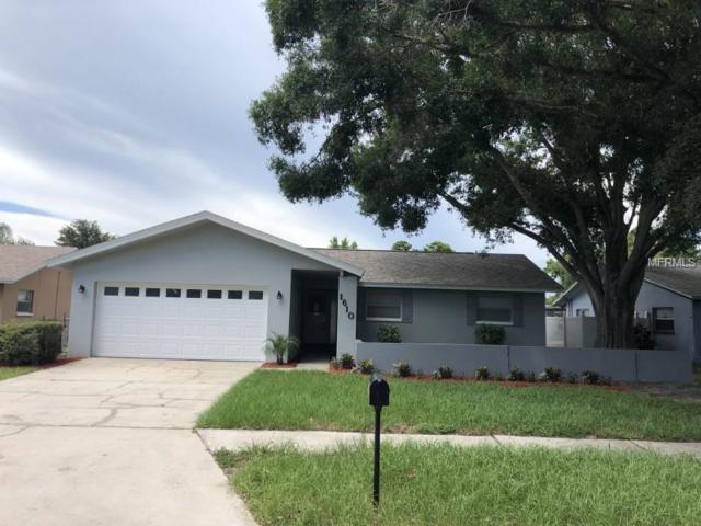 1610 Dale Circle N, Dunedin, FL 34698 (MLS #W7802270) :: Burwell Real Estate