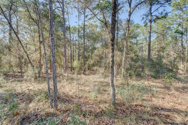 2.5 ACRES Drew Street, Brooksville, FL 34604 (MLS #W7802292) :: GO Realty
