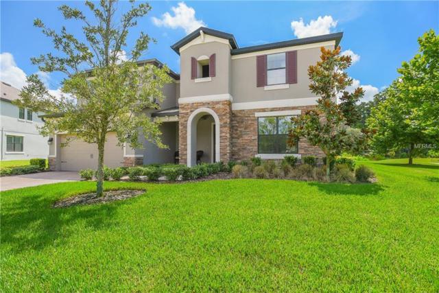 12535 Hitching Street, Odessa, FL 33556 (MLS #W7802894) :: Jeff Borham & Associates at Keller Williams Realty