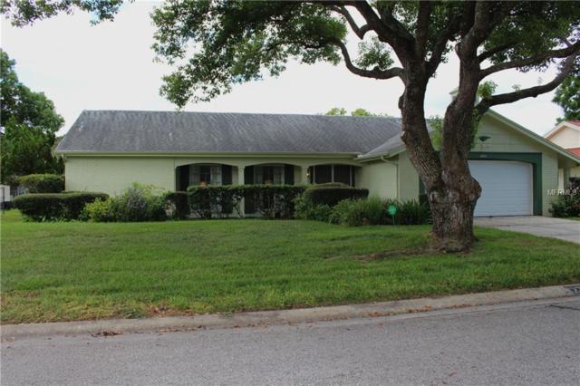 12214 Buttonwood Row, Hudson, FL 34667 (MLS #W7804172) :: The Duncan Duo Team