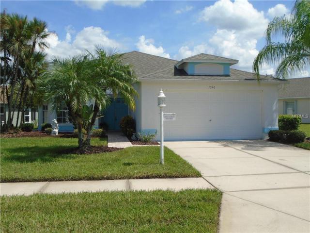 1036 Sweet Jasmine Drive, Trinity, FL 34655 (MLS #W7804803) :: Lock and Key Team
