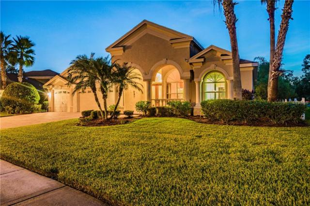 15904 Prince William Place, Odessa, FL 33556 (MLS #W7804808) :: SANDROC Group