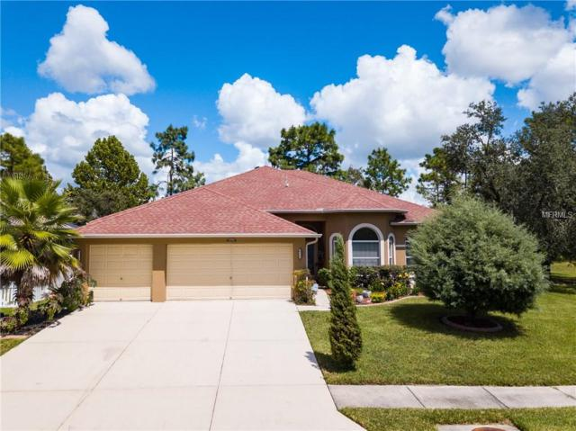 5684 Brackenwood Drive, Spring Hill, FL 34609 (MLS #W7804952) :: Remax Alliance