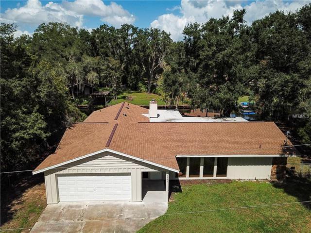 3995 E Gloria Drive, Hernando, FL 34442 (MLS #W7805050) :: Jeff Borham & Associates at Keller Williams Realty