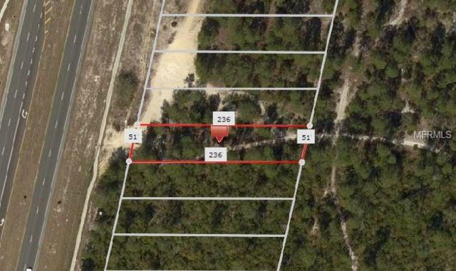 6436 Commercial Way, Weeki Wachee, FL 34613 (MLS #W7805162) :: Team Buky