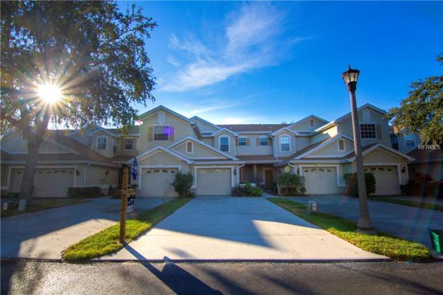 523 Spring Lake Circle, Tarpon Springs, FL 34688 (MLS #W7805801) :: Lovitch Realty Group, LLC