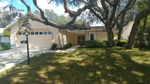 4830 Sandpointe Drive, New Port Richey, FL 34655 (MLS #W7806147) :: RE/MAX CHAMPIONS