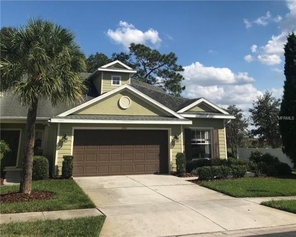 20101 Weeping Laurel Place, Tampa, FL 33647 (MLS #W7806602) :: Team Suzy Kolaz