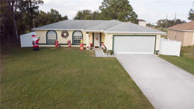 29 Sawfish Court, Poinciana, FL 34759 (MLS #W7807413) :: Mark and Joni Coulter   Better Homes and Gardens