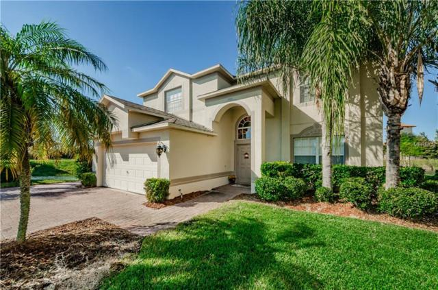 1329 Gallberry Court, Trinity, FL 34655 (MLS #W7807541) :: RE/MAX CHAMPIONS