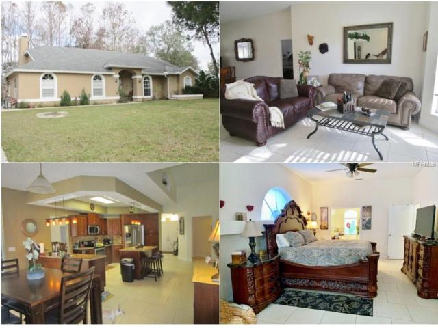 10551 Casey Drive, New Port Richey, FL 34654 (MLS #W7808574) :: Griffin Group