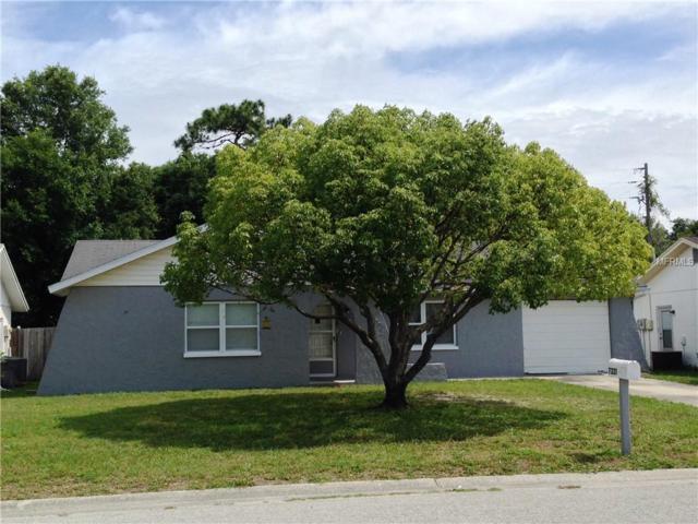 7221 Carmel Avenue, New Port Richey, FL 34655 (MLS #W7809593) :: Team Virgadamo