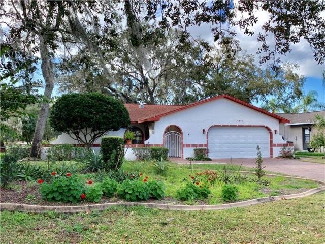 8805 Forest Lake Drive, Port Richey, FL 34668 (MLS #W7809613) :: Team Virgadamo