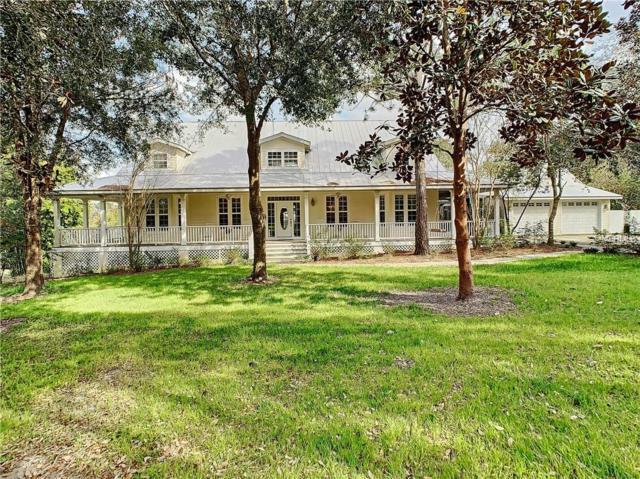 33619 Chipco Ranch Road, Dade City, FL 33523 (MLS #W7809695) :: RE/MAX Realtec Group