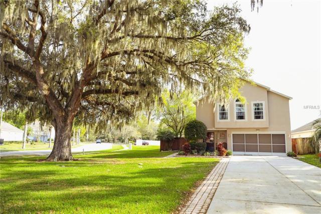 30200 Double Drive, Wesley Chapel, FL 33545 (MLS #W7810321) :: Team TLC | Mihara & Associates