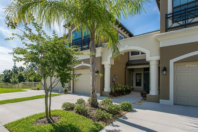 11404 Crowned Sparrow Lane, Tampa, FL 33626 (MLS #W7811468) :: Griffin Group