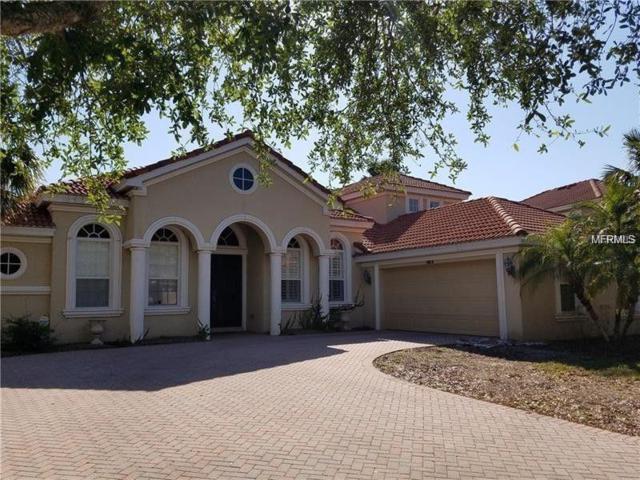 10614 Garda Drive, Trinity, FL 34655 (MLS #W7812211) :: Griffin Group
