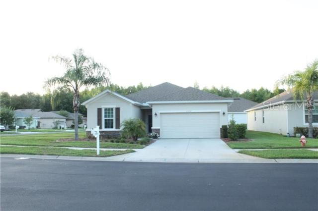 Address Not Published, New Port Richey, FL 34654 (MLS #W7812433) :: The Duncan Duo Team