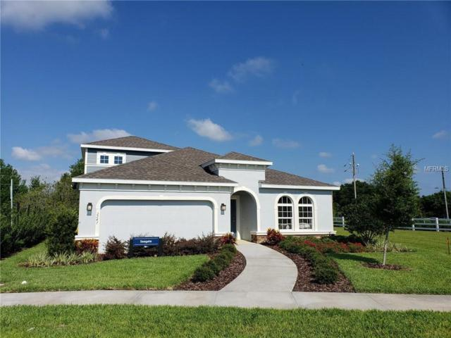 2247 Branding Iron Court, Trinity, FL 34655 (MLS #W7812443) :: Griffin Group