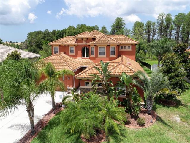 8805 Creedmoor Lane, New Port Richey, FL 34654 (MLS #W7812771) :: The Duncan Duo Team