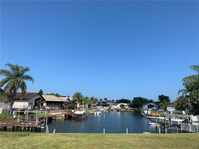 132 Spoonbill Drive, New Port Richey, FL 34652 (MLS #W7812807) :: The Duncan Duo Team
