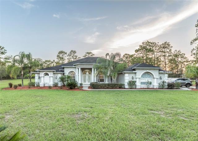8441 Stardust Way, Brooksville, FL 34613 (MLS #W7813484) :: Cartwright Realty
