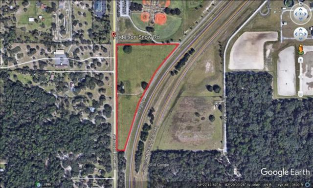 1290 Anderson Snow Road, Spring Hill, FL 34609 (MLS #W7814073) :: The Duncan Duo Team