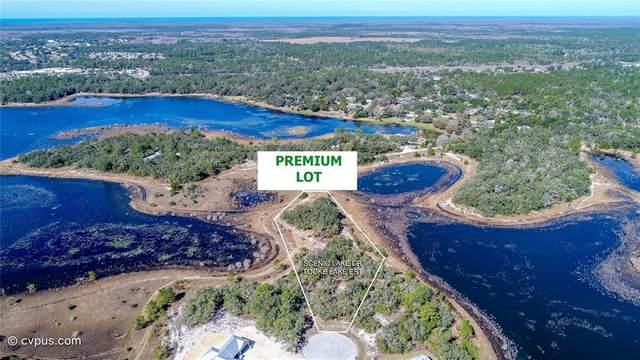 10400 Scenic Lake Drive, Weeki Wachee, FL 34613 (MLS #W7814285) :: Bob Paulson with Vylla Home