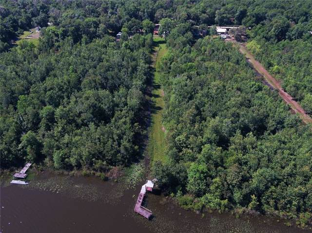 17431 SE 54TH Street, Ocklawaha, FL 32179 (MLS #W7814638) :: White Sands Realty Group