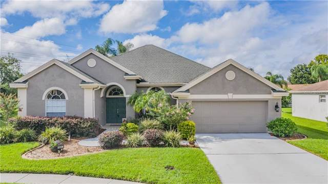 9807 Balsaridge Court, Trinity, FL 34655 (MLS #W7814705) :: Griffin Group