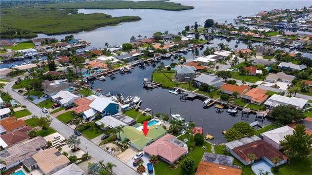 5001 Marlin Drive, New Port Richey, FL 34652 (MLS #W7815272) :: Delgado Home Team at Keller Williams