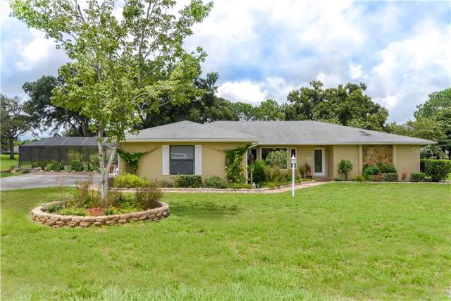 205 E Falconry Court, Hernando, FL 34442 (MLS #W7815299) :: Cartwright Realty