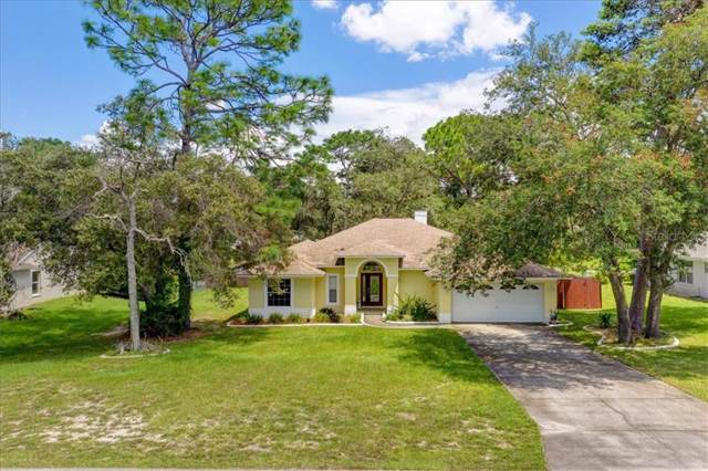 3008 Overview Lane, Spring Hill, FL 34608 (MLS #W7815642) :: NewHomePrograms.com LLC