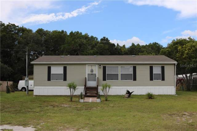 11701 Bruin Drive, New Port Richey, FL 34654 (MLS #W7816263) :: Team Borham at Keller Williams Realty
