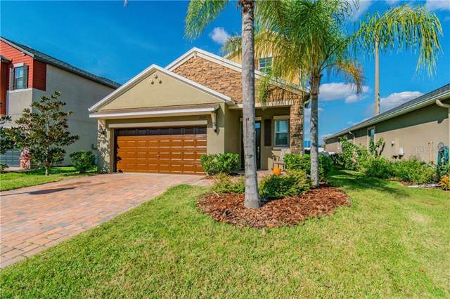 11656 Lake Boulevard, New Port Richey, FL 34655 (MLS #W7816420) :: The Duncan Duo Team