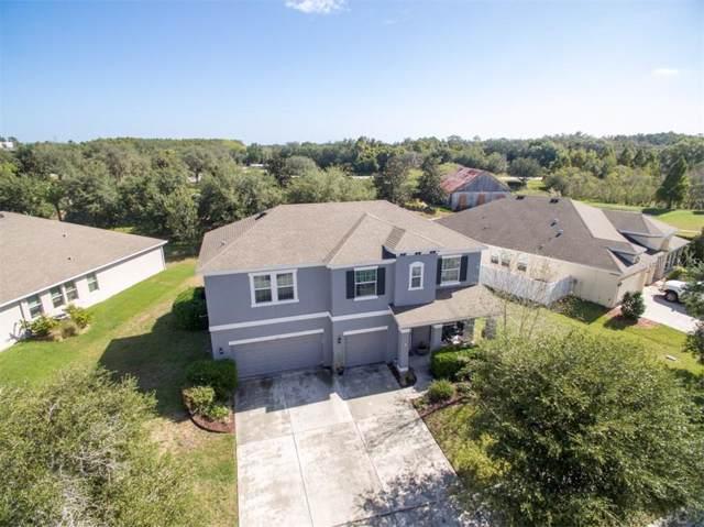 9150 Creedmoor Lane, New Port Richey, FL 34654 (MLS #W7816861) :: Premium Properties Real Estate Services