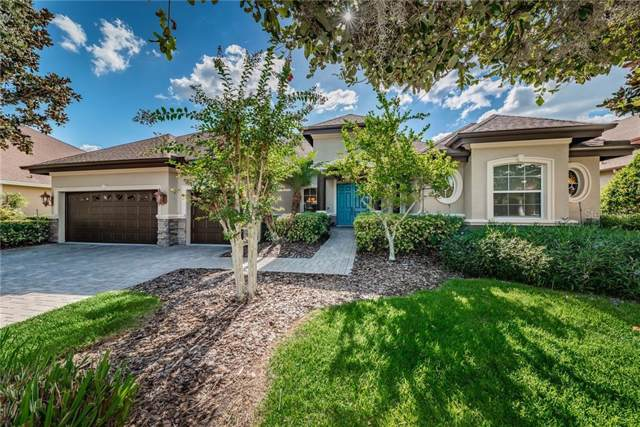 1548 Parilla Circle, Trinity, FL 34655 (MLS #W7816891) :: Gate Arty & the Group - Keller Williams Realty Smart