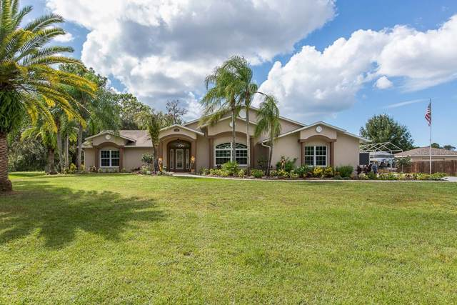 9050 Bullrush Court, New Port Richey, FL 34654 (MLS #W7817103) :: The Duncan Duo Team