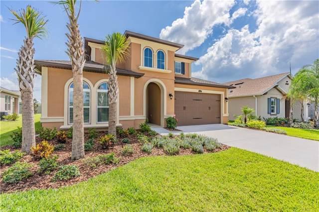 4622 Tivoli Drive, Wesley Chapel, FL 33543 (MLS #W7817167) :: 54 Realty