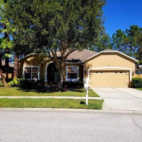3739 Grand Forks Drive, Land O Lakes, FL 34639 (MLS #W7817238) :: Team Bohannon Keller Williams, Tampa Properties