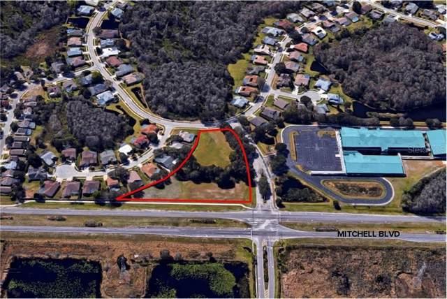 Mitchell Boulevard, Trinity, FL 34655 (MLS #W7817282) :: Team Borham at Keller Williams Realty