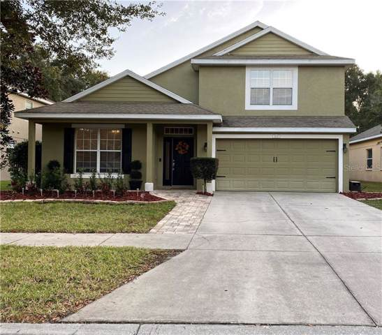 11712 Colony Lakes Boulevard, New Port Richey, FL 34654 (MLS #W7818490) :: The Duncan Duo Team
