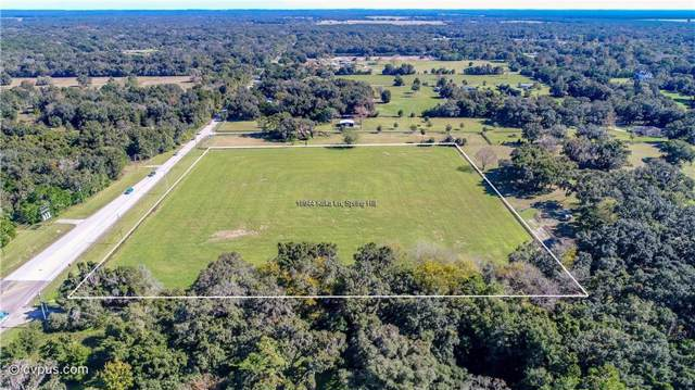 20528 County Line Road, Spring Hill, FL 34610 (MLS #W7818821) :: Griffin Group