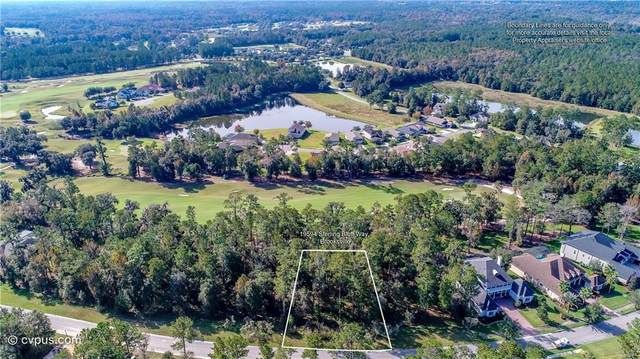 19594 Sterling Bluff Way, Brooksville, FL 34601 (MLS #W7819464) :: Dalton Wade Real Estate Group