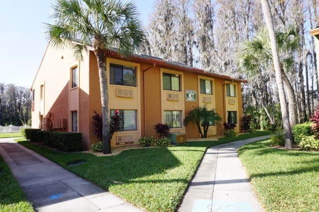 20861 Haulover Cove C5, Lutz, FL 33558 (MLS #W7819737) :: Team Bohannon Keller Williams, Tampa Properties