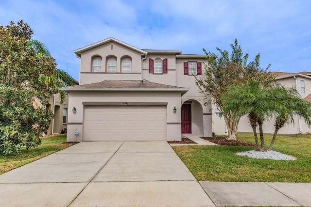 17453 Balmaha Drive, Land O Lakes, FL 34638 (MLS #W7819990) :: Premier Home Experts