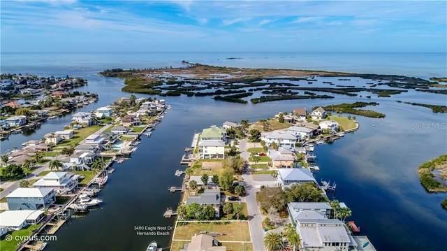 3480 Eagle Nest Drive, Hernando Beach, FL 34607 (MLS #W7820805) :: Lockhart & Walseth Team, Realtors